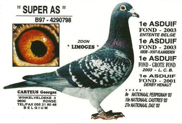 Carteus-Super-As 798