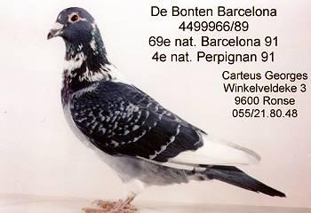 bontene-barcelona-b-89-4499966