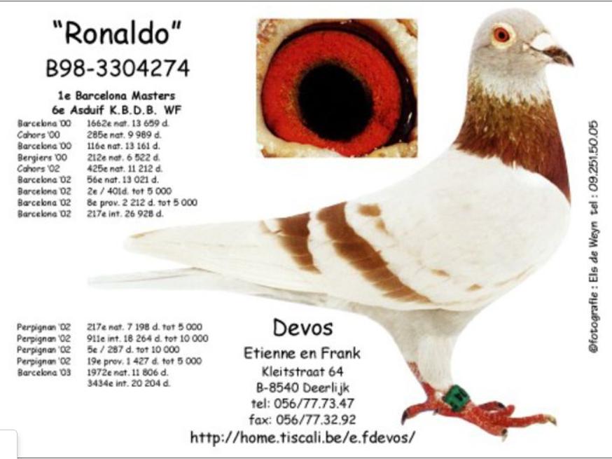 ronaldo-etienne-devos