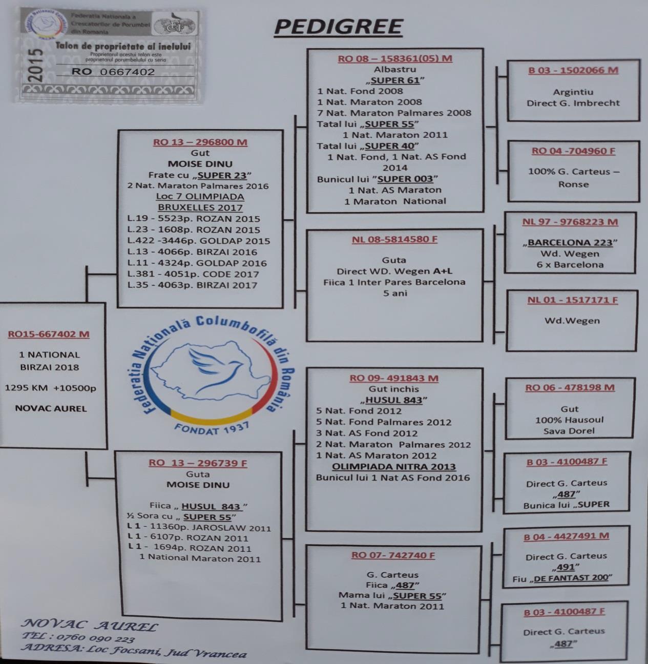 pedigree-aurel-novac